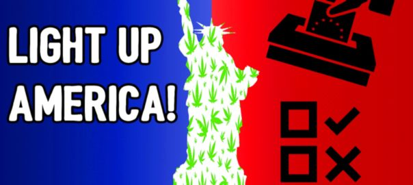 CannaVice TV Light Up America States Voting for Weed in 2016