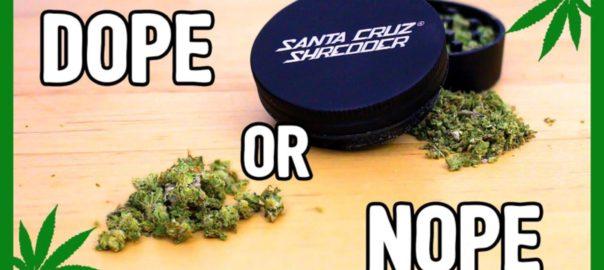 CannaVice TV Grinding Weed By Hand Vs Santa Cruz Grinder