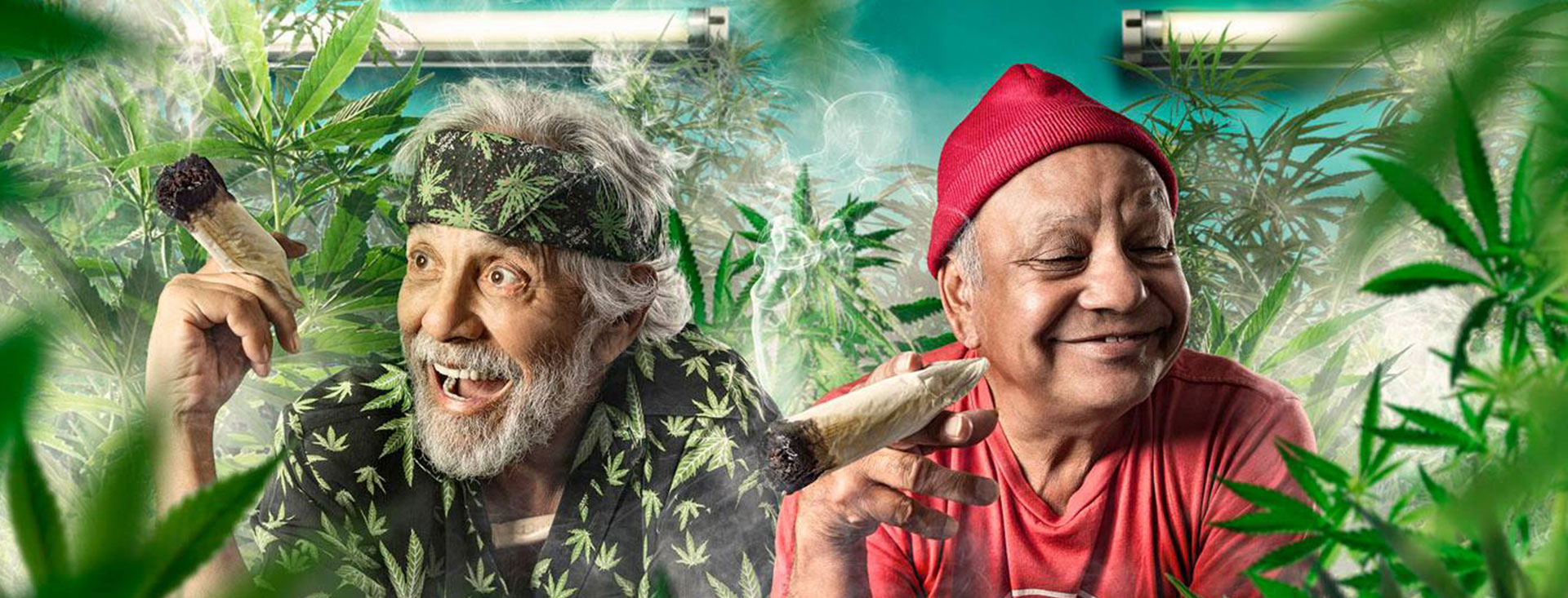 High Folks talk Night Roxbury, Dallas Buyers Club, Cheech & Chong