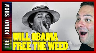 Will Obama Free Weed Donald Trump Jeff Sessions destroy Industry