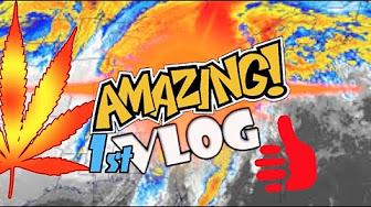Weed News 420 2017 Ice Storm VLOG #1