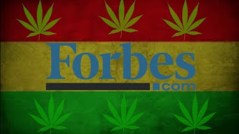 Weed News At 420 Forbes on Weed?