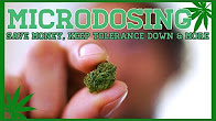 CannaVice TV Microdose Cannabis & Avoid Weed Paranoia