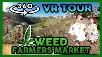 High Hipsters 360 VR Tour Weed Farmers Market