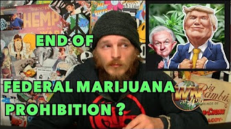 Weed News 420 Bill End Federal Marijuana Prohibition