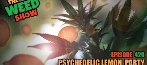 The Weed Show Psychedelic Lemon Party