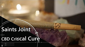 Positive Smash 420 Reviews Saints Pre-Roll Joint CBD Critical Cure