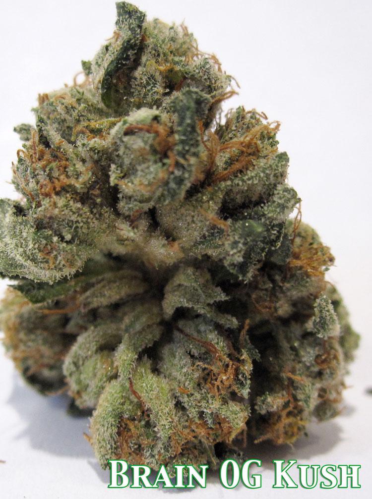 CT Weed Reviews Brain OG