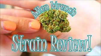 The Dab Spot The Ass Was Good! | Allen Wrench