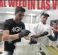 420 Science Club Legal Weed In Las Veags- SAHFS
