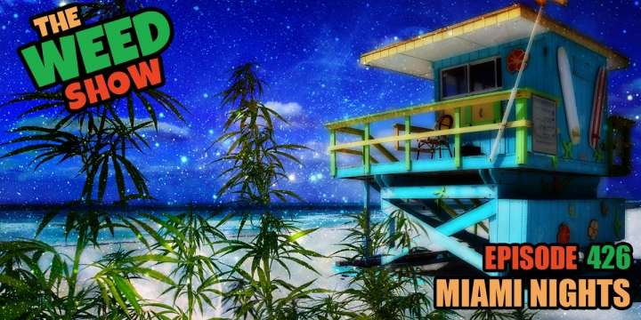 The Weed Show Miami Nights