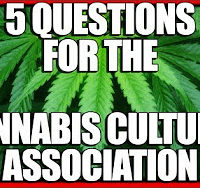 5 Questions for Cannabis Cultural Association Social Justice Warriors War on Drugs
