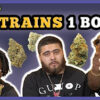 Loaded Up 5 Weed Strains 1 Bong