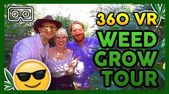That High Couple 360 OUTDOOR WEED GROW TOUR