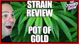 Top 5 Facts & Cannabis Strain Review of Pot of Gold - The Johno Show