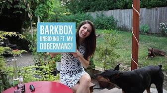 Positive Smash 420 BarkBox Unboxing Ft. Carter & Darby (My Doberman Pinschers)