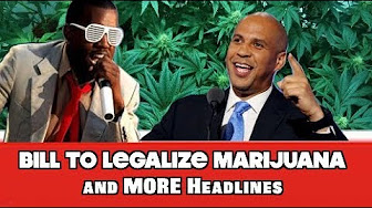 Weed News at 420 Cannabis News & Live Stream
