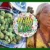 That High Couple High Life Music & Cannabis Festival 2017