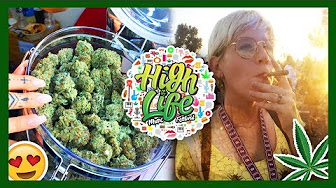 That High Couple High Life Music & Cannabis Festival 2017