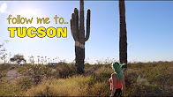 Road Trip to TUCSON & back! | CoralReefer, Mio & Daffodil