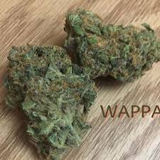 CT Weed Reviews Wappa