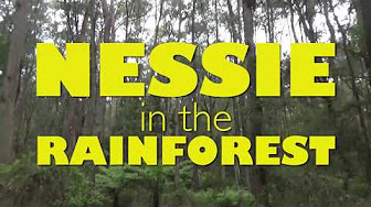 Nessie in the Rainforest! Nessie Down Under Day 13
