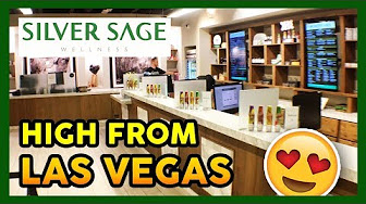 That High Couple Silver Sage Wellness Dispensary Showcase | Las Vegas, Nevada