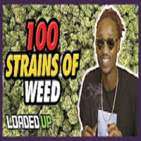 Loaded Up 100 Weed Strains To Try Before You Die