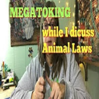 MaryLoveGlass Megatoke with me as we discuss Animal Laws