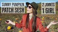 Positive Smash 420 Sunny Pumpkin Patch Sesh-2 Joints 1 Girl