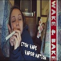 SilencedHippie WAKE & BAKE IN A WEED HOTEL! // Stok Vaporizer