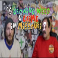 Weed News at 420 Is Growing WEED Legal in Missouri ? Mark Shanklin ? This could change the world Is Growing WEED Legal in Missouri ? Mark Shanklin ? This could change the world