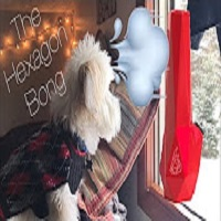 Deevaology Reviews the Hexagon Bong from BRNT Designs & Snow day bong rips
