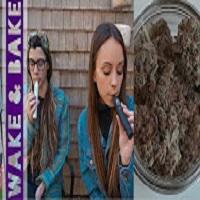 SilencedHippie Vaping Purple Weed // Fez Vapor