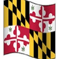 Weed News at 420 Medical marijuana sales in Maryland finally start after delays