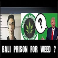 Weed News at 420 TRUMP MIGHT HELP AMERICAN MMJ PATIENT AVOID BALI PRISON