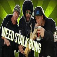 Master Bong Weed Stalk Bong