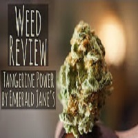 Positive Smash 420 Weed Review-Tangerine Power by Emerald Jane's (Legal WA Cannabis)