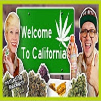 That High Couple First Legal Weed Haul in California