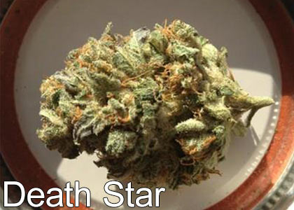 CT Weed Reviews Death Star