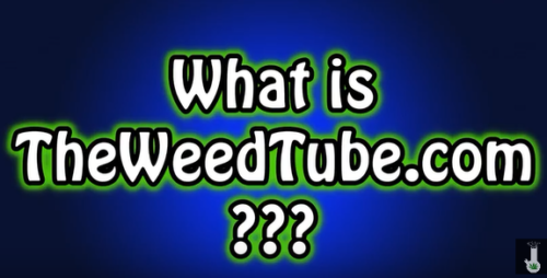 That Stupid Stoner Channel What is TheWeedTube.com? || WITH AREND