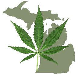 Michigan approves marijuana legalization vote for November