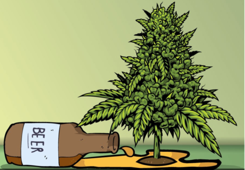 Metrics point to weed substituting for booze in marijuana states