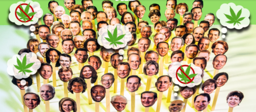 Does Your Senator Think Weed Should Be Legal?